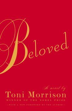 Beloved : a novel by Toni Morrison. Click the cover image to check out or request the Douglass Branch bestsellers and classics kindle.