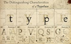 A Beginners Guide to Typography | CreativeFan