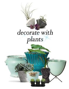 """plants!"" by art-gives-me-life ❤ liked on Polyvore featuring interior, interiors, interior design, home, home decor, interior decorating, Design Within Reach, Vietri, plants and planters"