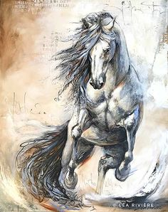 Animal Drawings Dance with the wind disponible à la Galerie Thompson-Landry -Toronto - Abstract Horse Painting, Watercolor Horse, Horse Drawings, Animal Drawings, Art Drawings, Painted Horses, Pretty Horses, Beautiful Horses, Arte Equina