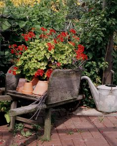 I have an old wheel barrow just like this...great idea vs. planting flowers in the wheel barrow
