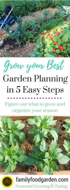 Garden Planning can seem daunting to many that dislike being organized or don't know where to start. I'm here to help!  I love garden planning, in fact it's choosing varieties and seeds and organizing my gardening season that get's me so excited to grow food year-to-year (other than those healthy