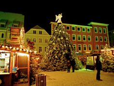 Huge Christmas Tree in Minden, Germany Holiday Tree, Christmas Trees, Holiday Decor, Christmas In Germany, Mario, Merry Christmas To You, Luxury Holidays, Places To Go, Germany