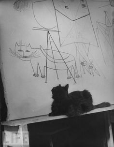 Gjon Mili's cat Blackie looking at his portrait by Saul Steinberg in Mili's studio, 1947.