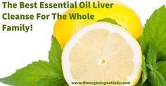 Are you looking for a liver cleanse that will benefit your entire family? This cleanse is great for adults, kids and babies! It is important to...
