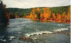 Quesnel River below bridge in Autumn. Google Search Forks, Wilderness, Bridge, Autumn, River, Google Search, Pictures, Outdoor, Beautiful