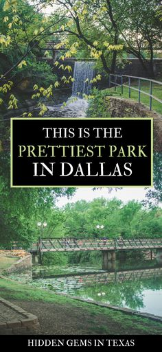 Teddy Bear Park in Dallas is a magical, whimsical sight in a lush, fairytale background. Here's what you need to know before visiting Teddy Bear Park. Dallas Travel, Texas Travel, Travel Usa, Viaje A Texas, Turtle Creek Dallas, Dallas Things To Do, Places To Travel, Places To See, Lakeside Park