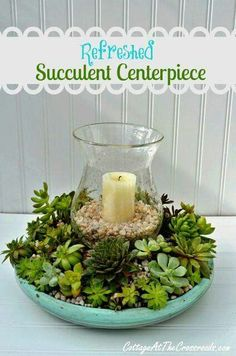 Succulent center piece with hurricane candle