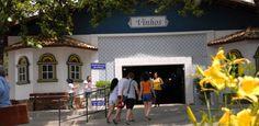 Esqui, golfe, festa da uva e alcachofra: conheça atrações de São Roque (SP)