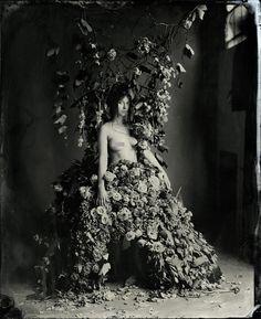 Jillian Flower Dress  Wetplate Collodion  by Kristen Hatgi Sink