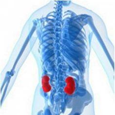 SEGUROS PRIZA te dice. Existen dos tipos principales de diálisis: hemodiálisis y diálisis peritoneal. Ambos tipos filtran la sangre para eliminar los desechos peligrosos del cuerpo y el exceso de sal y agua. La hemodiálisis se logra con un aparato. La diálisis peritoneal usa la membrana que recubre el abdomen, llamada membrana peritoneal, para filtrar la sangre.