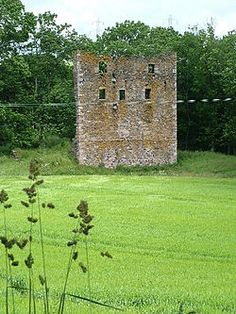 Balquhain Castle is a ruined tower house in Aberdeenshire, Scotland. It was the stronghold of the Leslies of Balquhain. The castle is located 4 kilometres (2.5 mi) west of Inverurie. The castle was built in the 14th century and held by Leslie family from 1340.
