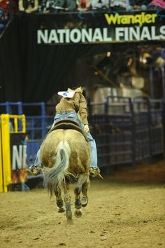 Exit off the NFR, sherry cervi on Stingray