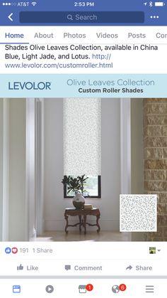 Window Treatments, Window Dressings, Window Coverings, Sheet Curtains