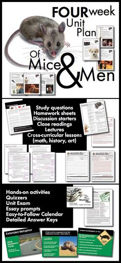 What can I title an essay that summarizes the book . Of mice and men?