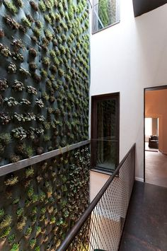green wall / Caló Mansion by Esseelle Associati Studio di Architettura