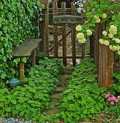 Beautiful garden and fence gate. Very welcoming!