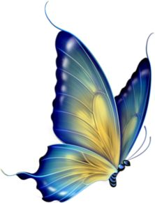 "Photo from album ""бабочки"" on – Best Painting Butterfly Clip Art, Butterfly Drawing, Butterfly Pictures, Butterfly Painting, Butterfly Watercolor, Butterfly Wallpaper, Blue Butterfly, Beautiful Butterflies, Painted Rocks"