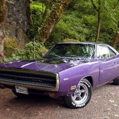 1970 Dodge Charger Maintenance of old vehicles: the material for new cogs/casters/gears/pads could be cast polyamide which I (Cast polyamide) can produce