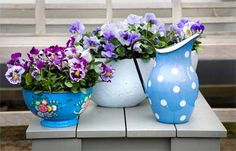 Sirôtky a minisirôtky Hollyhock, Pansies, Spring Flowers, Spring Time, Glass Vase, Planter Pots, Sweet Home, Projects To Try, Home And Garden