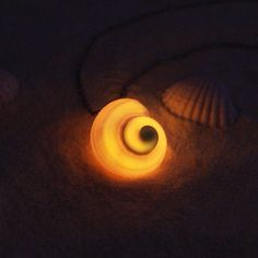 Glow in the Dark Sea Witch Necklace Nautilus Shell Necklace