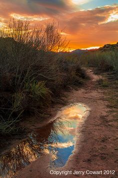 Sunset photography nature home decor fine by PhotosbyJerryCowart, $37.50