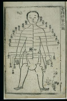 Acupuncture_chart,_renmai_(the_Director_Vessel)_Wellcome_L0037828.jpg (1984×2976)