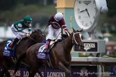 Untapable's Full Brother Debuts Saturday At Fair Grounds - Horse Racing News | Paulick Report