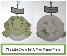 Help students learn the life cycle of a frog by making this cute paper plate craft.