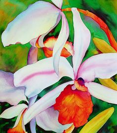 Queens Orchid by Georgia O'Keeffe