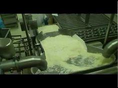 Haloumi cheese production line