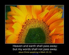 Heaven and earth shall pass away: but my words shall not pass away. ~ Mark 13:31 KJV