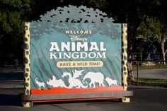You can see a dragon on the signs for Animal Kingdom, and a dragon's head hanging above the front gates. They were there to represent a scrapped area called Beastly Kingdom, which was going to be dedicated to mythical animals. | 33 Things You Probably Didn't Know About Disney Parks