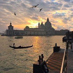Dreamy #Venezia ✨