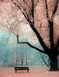 So pretty - want to walk there