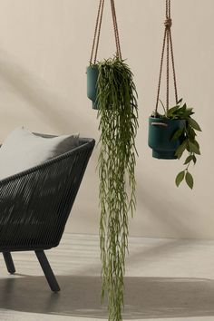 Marie Claire, Hanging Plants, Decoration, Houseplants, Planter Pots, Sweet Home, Interior, Flowers, Shopping