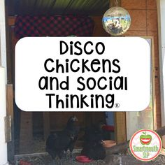 Disco Chickens and Social Thinking…