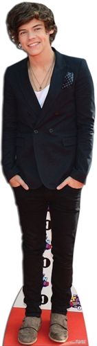 Harry - One direction Life Size Cutouts, Life Size Cardboard Cutouts, One Direction Harry, Vinyl Signs, Dream Guy, Celebs, Celebrities, Decoration, Harry Styles