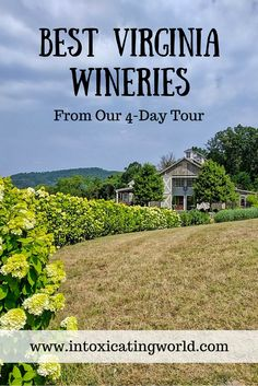 Virginia wine country has some of the top wineries in the state...and the country! Here are 4 of our favorite vineyards that you should be sure to visit when you travel to Virginia for a wine tasting trip!