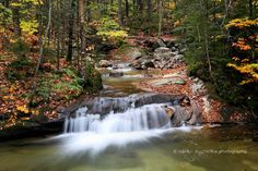 Waterfall at Franconia Notch State Park in New Hampshire, courtesy Mark Ducharme.