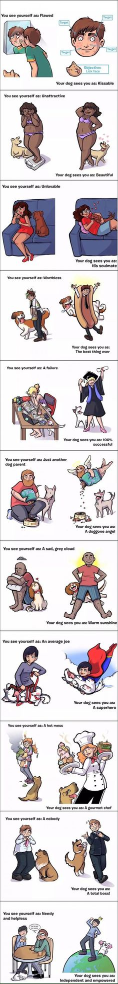 Dogs are wonderful.