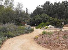 Rancho Santa Ana Botanic Garden - Claremont, CA - 16th stop