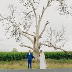 twisted tree wedding photography! #jelphotography #aucklandphotographer alternative wedding photographer