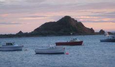 Fishing boats in front of Tapu Te Ranga Island in Island Bay, Wellington, New Zealand (I see this everyday)