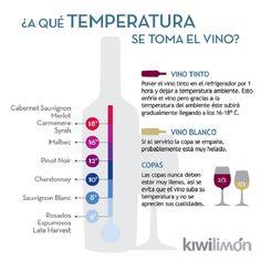 Temperatura correcta vinos | Me lo dijo Lola