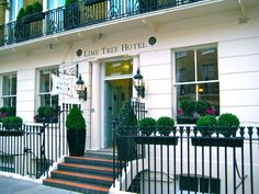 Lime Tree Hotel - bed & breakfast, B, Belgravia hotel London Hotels, London Tours, London Travel, Budget Friendly Honeymoons, Bed & Breakfast, Hotel Bed, Things To Do In London, Hotel Reviews, Wonderful Places