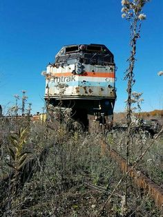 No more commuters. Abandoned Train, Abandoned Houses, Abandoned Places, Abandoned Vehicles, Old Trains, Fantasy Landscape, Train Tracks, Old Buildings, Train Station