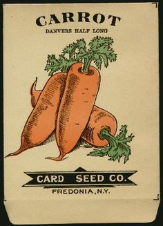 vintage tomato seed packet - Google Search