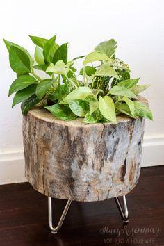 stump planter with hair pin legs