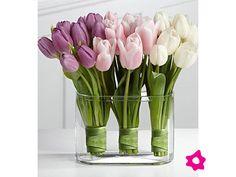 Tulipanes como centros de mesa